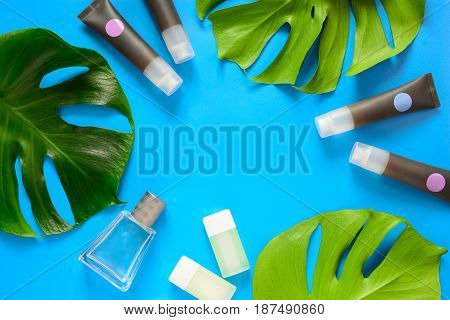 Cosmetic and spa concept beauty products background with a space for a text view from above