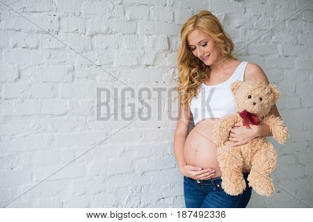 Lovely pregnant girl with a teddy bear