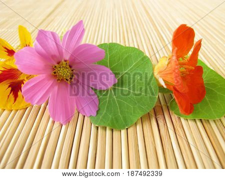 Bouquet with edible flowers with nasturtium flowers and garden cosmos