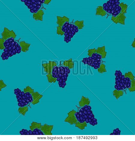 Seamless Pattern of Grapes , Fruit Berry on Azure Background, Vector Illustration