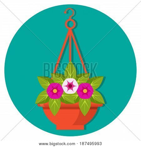 Hanging flower basket with petunias vector illustration isolated in blue circle. Colorful plants with leaves in flowerpot