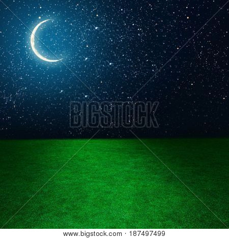 Green field on the background of the night sky.  Elements of this image furnished by NASA