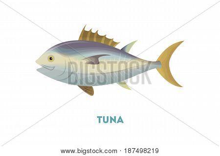 Isolated tuna fish on white background. Fresh and tasty fish.
