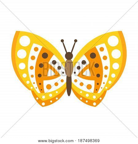 Cute yellow butterfly with open wings colorful vector Illustration isolated on a white background