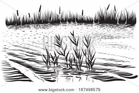 Black and white The bank of the river with reeds and trees. Sketchy style graphic art.