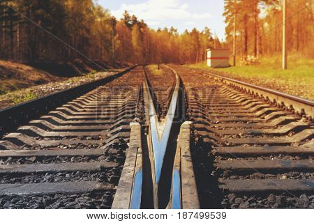 Vintage filtered picture of railroad. Railroad tracks in forest. summer sunny day.