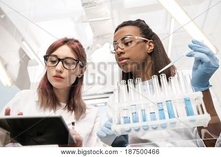 Low Angle View Of Scientists Working Together With Reagents In Laboratory