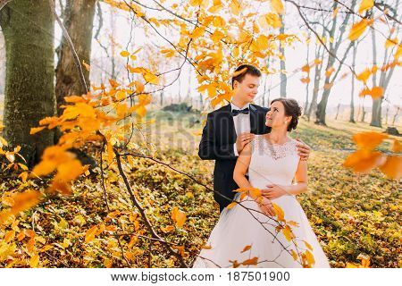 The groom is hugging the bride back behind the sticks with yellowed leaves