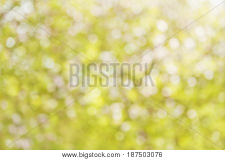 Colorful summer bokeh background in yellow tones.