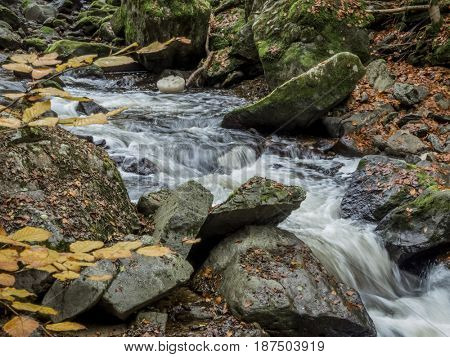 stream with running water