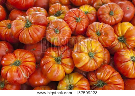 Village market organic tomatoes. Qualitative background from tomatoes. Fresh tomatoes. Red tomatoes