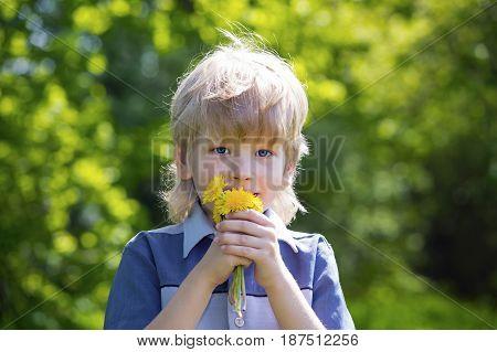 Happy blonde boy with dandelions in summer park