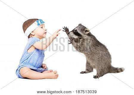 Pretty baby girl playing with raccoon, isolated on white background