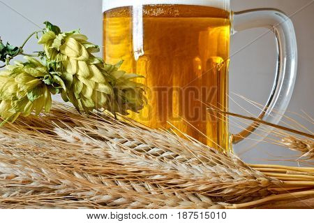Glass of Beer with Barley and Hop Cones