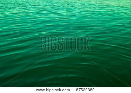 Green color abstract background of liquid wave based on water wave