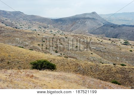 Slopes Of The Golan Heights