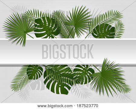 Green summer tropical header with exotic palm leaves and plant. Vector floral design on white line background.