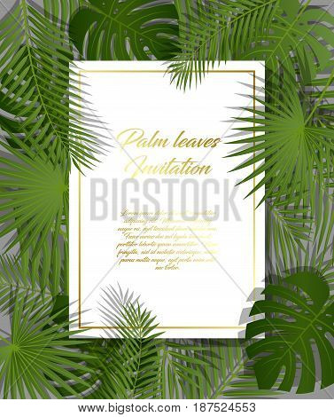 White paper on green summer tropical background with exotic palm leaves and plant. Vector floral design with golden frame.