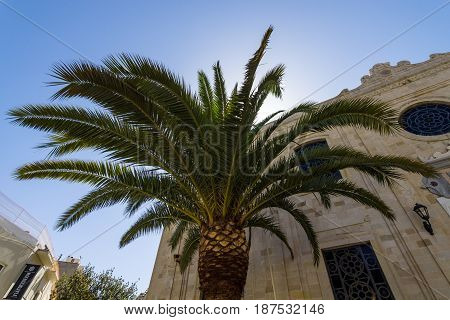 HERAKLION GREECE - JULY 16 2016: The branches of palm trees on the background of the facade of the Church of Saint Titus in the historic center of the city.