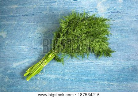 A bunch of green dill on a blue background.