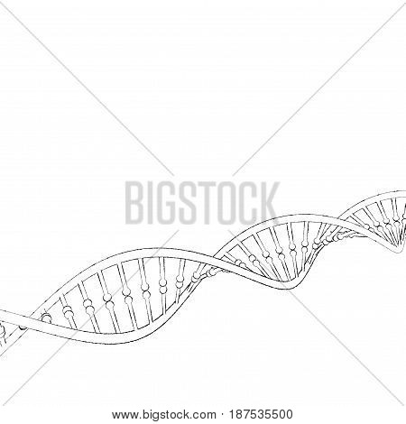 DNA strand. Isolated on white background. Sketch illustration.