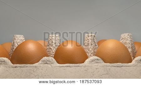 Packing Eggs In A Cardboard Box Top And Close-up View