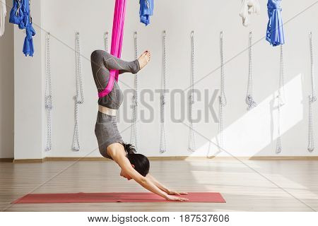 Side view of young woman doing antigravity yoga using hammock in studio. Girl supported by material with hands on the floor, straighten legs and lean back. Cross position in aerial yoga
