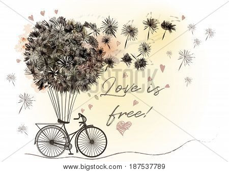 Cute romantic vector illustration with retro bicycle and dandelions in vintage style