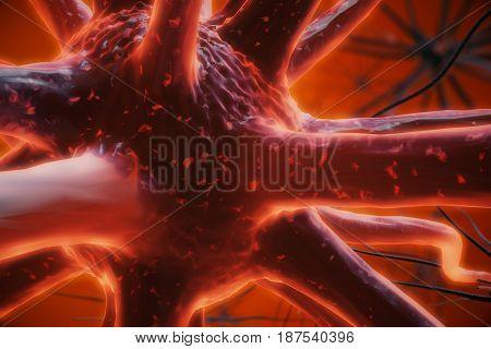 Red Neuron Closeup