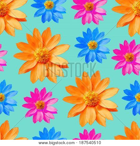 Adonis. Texture of flowers. Seamless pattern for continuous replicate. Floral background photo collage for production of textile cotton fabric. For use in wallpaper covers.