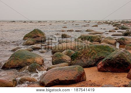 Stony coast of the Baltic Sea. Kaltene