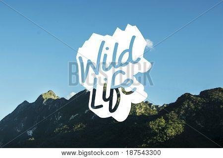 Wildlife Nature Mountain Word Graphic