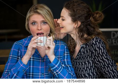 Young woman whispering secret into female friend ear in coffee shop