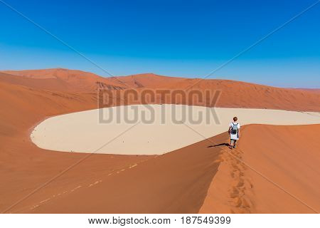 Tourist walking on the scenic dunes of Sossusvlei Namib desert Namib Naukluft National Park Namibia. Adventure and exploration in Africa.
