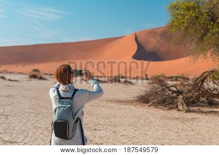 Tourist Taking Photo At Scenic Braided Acacia Tree Surrounded By Majestic Sand Dunes At Sossusvlei,