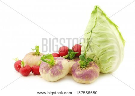 mix of cabbage,radishes and turnips on a white background