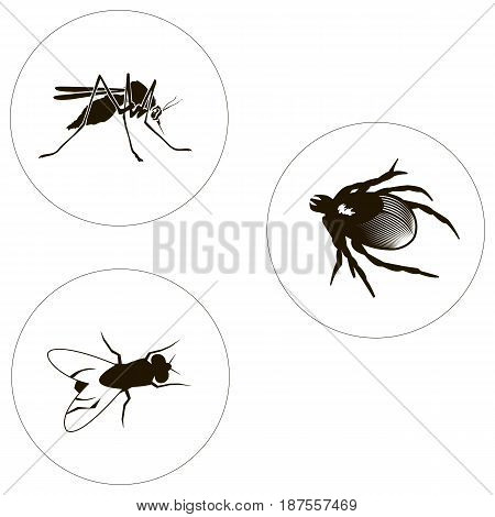 insects set including bug fly and mosquito. Bugs icons. Vector illustration