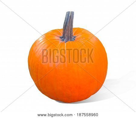 Pumpkin isolated on white background. Fresh and orange.Top view of a pumpkin isolated for Halloween, Thanksgiving day, other autumn Holidays.