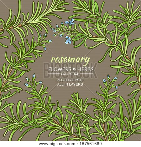 rosemary branches vector frame on color background