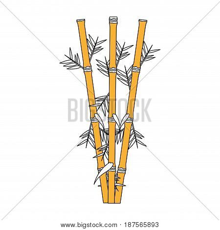 color graphic of bamboo stems with leaves colorless vector illustration