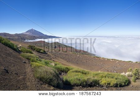 National park Tenerife with Teide and sea of clouds above the Orotava Valley