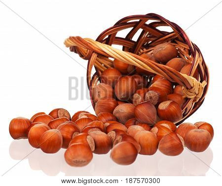 Ripe filberts in the wicker basket isolated over white background