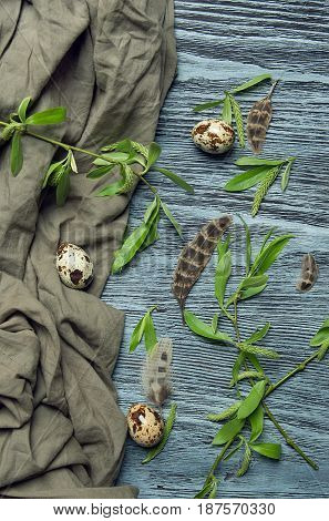 Abstract composition with quail feathers and eggs