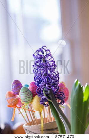 Violet Hyacinth Flower and a Colorful Easter Glittery Plastic Eggs