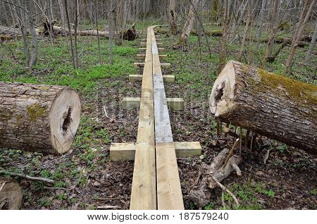 New wooden pathway for hikers in forest.