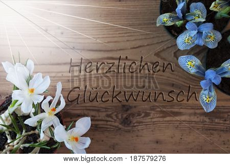 Wooden Background With German Text Herzlichen Glueckwunsch Means Congratulations. Sunny Spring Flowers Like Grape Hyacinth And Crocus. Aged Or Vintage Style