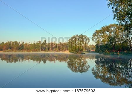foggy river with the trees are reflected in water sunrice