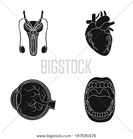 Male system, heart, eyeball, oral cavity. Organs set collection icons in black style vector symbol stock illustration .