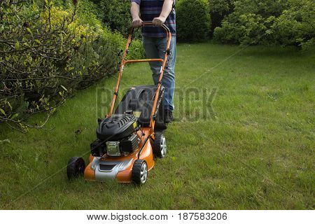 A man cuts the grass in the garden with a gasoline mower. In the background is a bush.