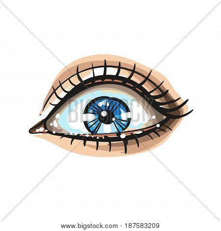 Eye isolated on white background vector illustration logo